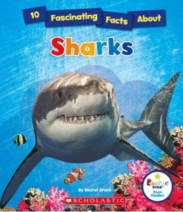 Imagem de 10 FASCINATING FACTS ABOUT SHARKS