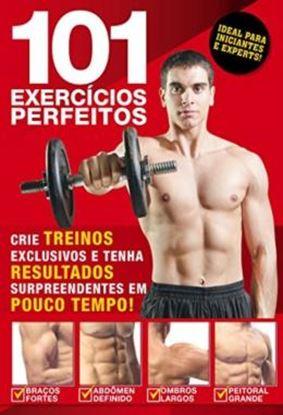 Imagem de 101 EXERCICIOS PERFEITOS