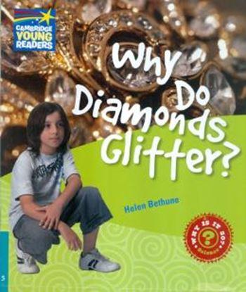 Imagem de WHY DO DIAMONDS GLITTER? 5 FACTBOOK